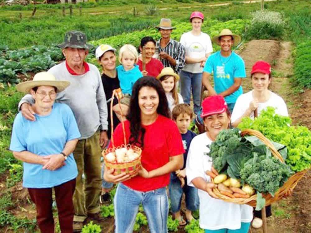Agricultura familiar: gestores podem cadastrar projetos no Siconv até 25 de julho